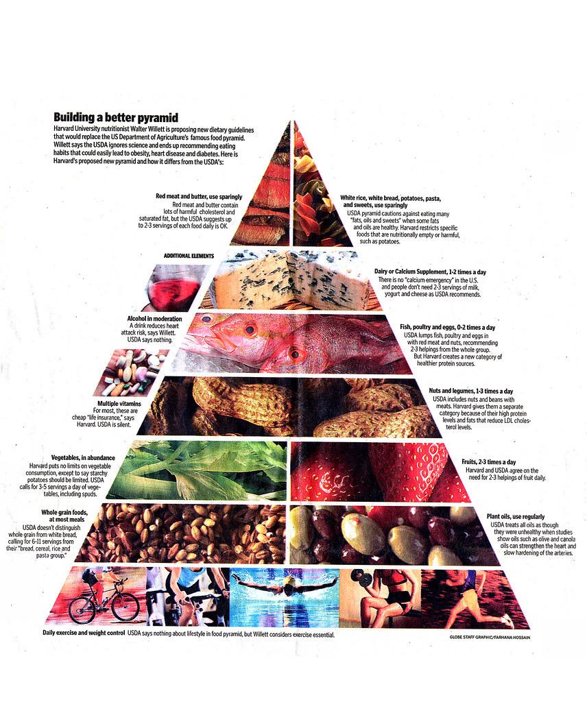 Walter Willette Revised Food Pyramid The Leading Harvard