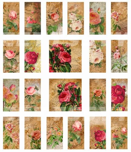 Vintage Garden Rose Vintage Garden Rose 1 X 2 Domino