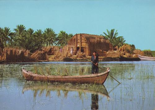 Marsheland-Iraq 1980