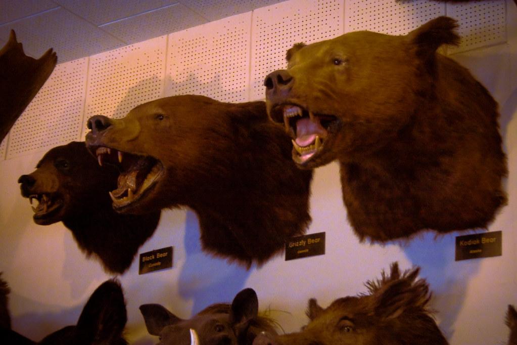 Bear And Foster Buildings  S Fair Oaks