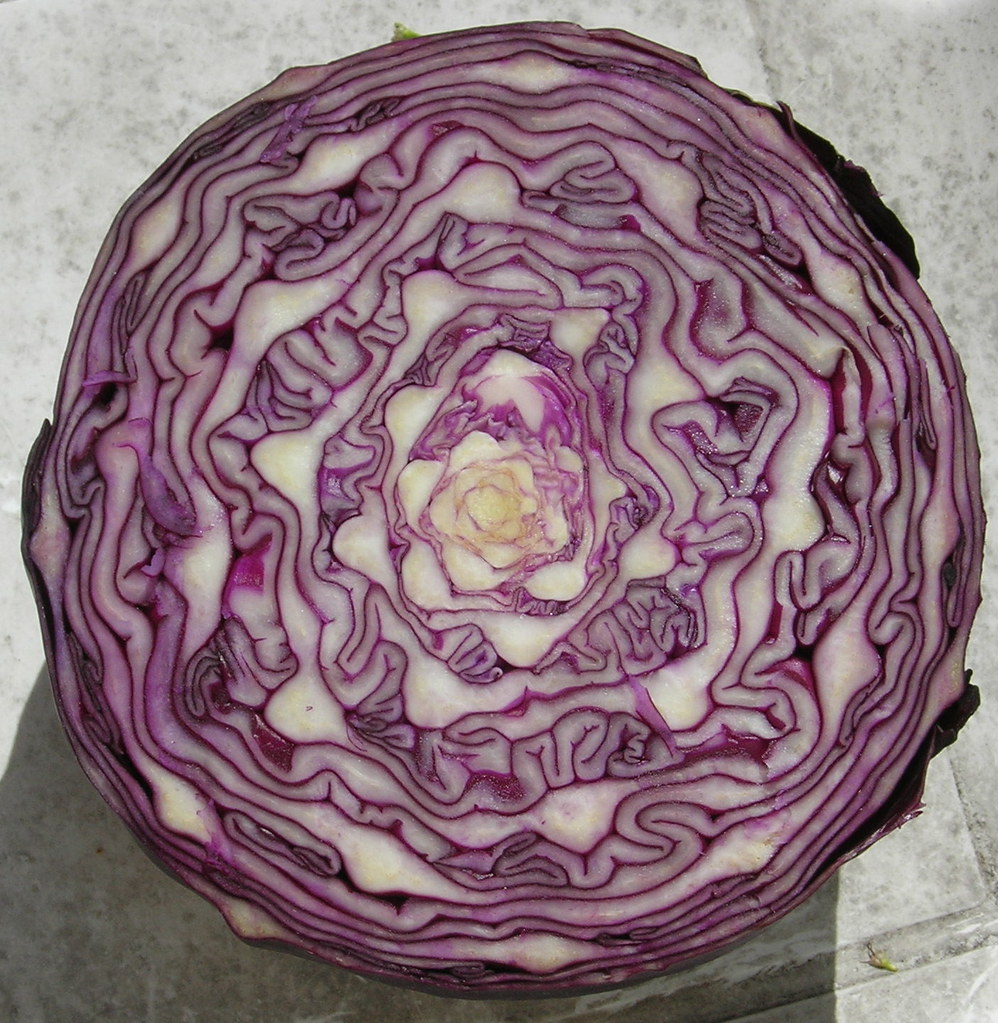 how to store cut cabbage