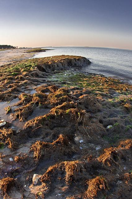 Beach In Mathews Va