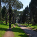 Via Appia - Queen of the long roads