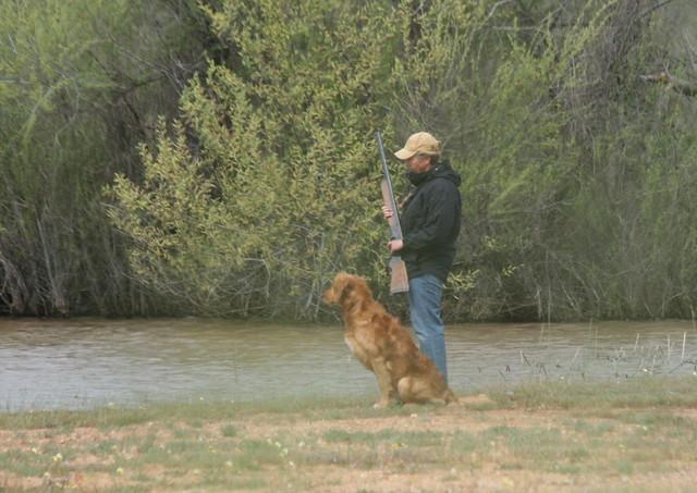 Image Result For Dog Training California