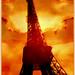 Esplendor da Torre Eiffel - France
