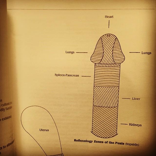 Penis Reflexology 27