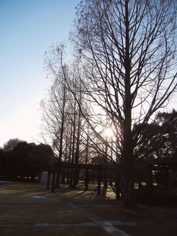 2014年冬・春_49