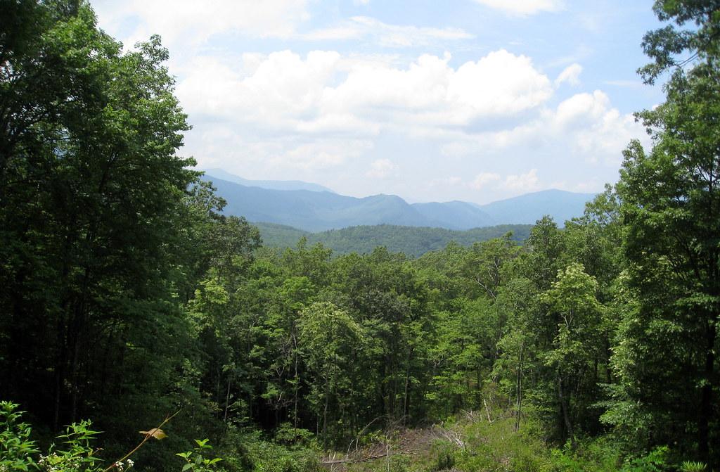 Great Smoky Mountains National Park Roaring Fork Motor N