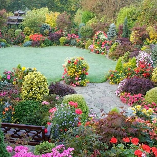 Atlanta Landscaping: Atlanta Living! #backyard #lawn #landscape #flowers #color