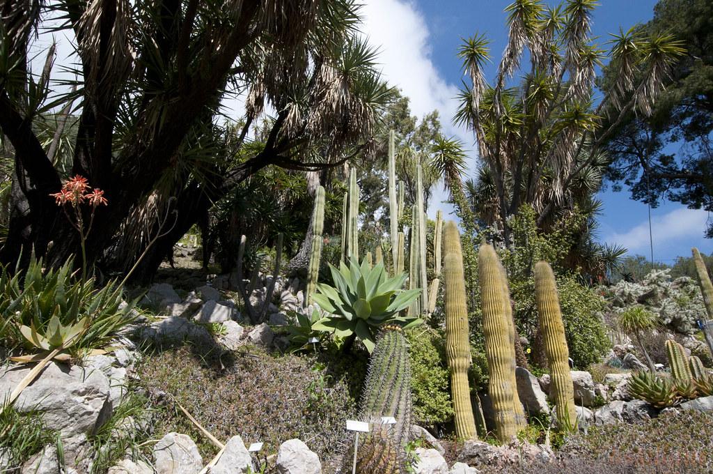 Villa et jardins hanbury garden italia le magnifique jar flickr for Jardin hanbury