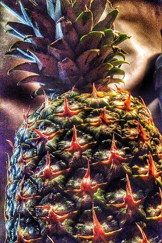 Pineapple!! | by aspry1957