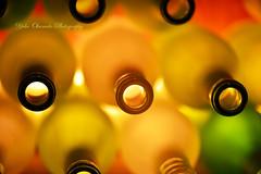 at Wine cellar