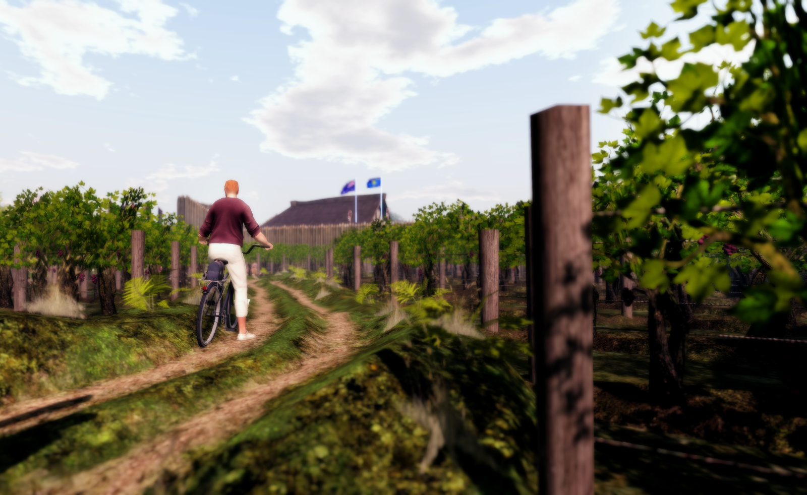 Ricco riding his bicycle and exploring SL