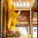 Burmese Temple / Penang