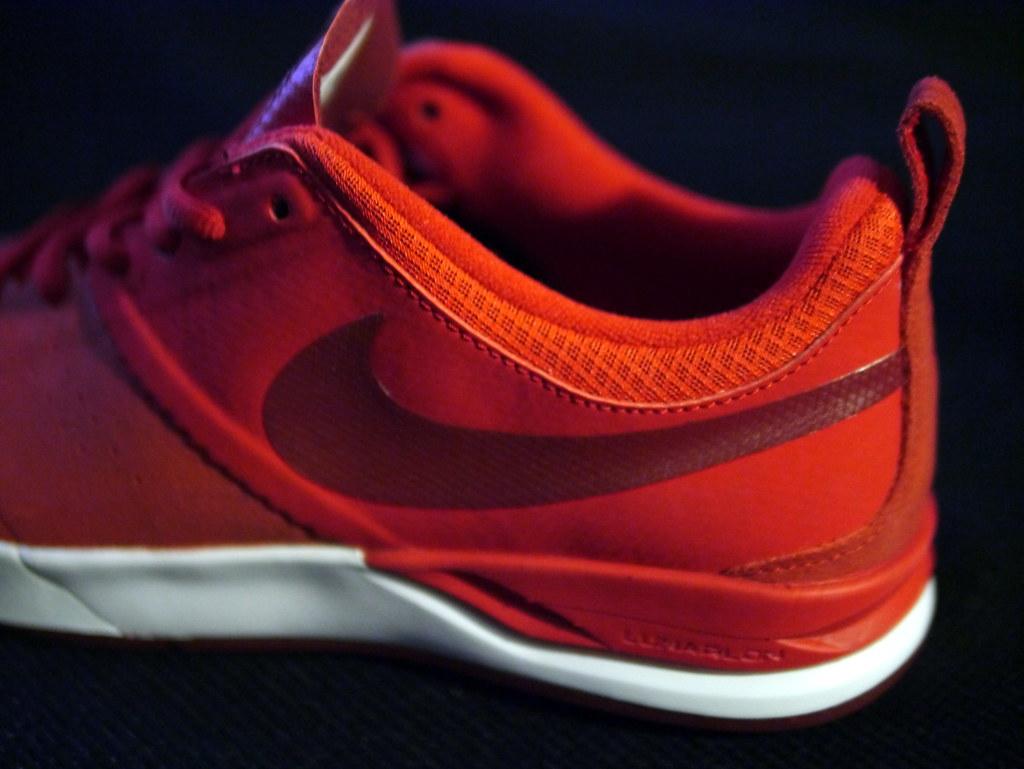 Nike Sb Pro Skate Shoes