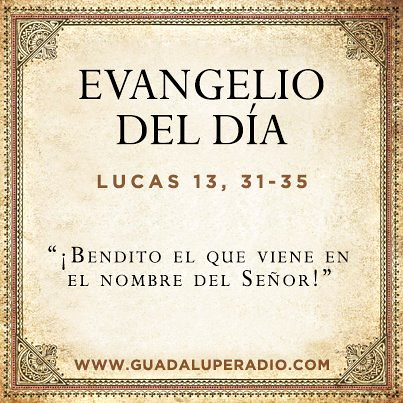 Evangeliodeldia lectura del santo evangelio seg 250 n san lucas 13 31 35