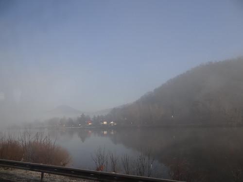 wolke baum nebel