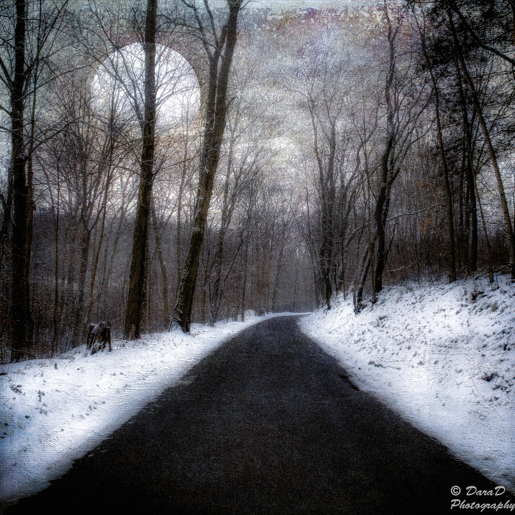 moonlit road Moonlit road (scutra remix) [feat kédo rebelle] - kédo rebelle 3:330:30 5  rbyn – beautiful disaster (alejandro diego & nolex remix) - rbyn , karra ,.