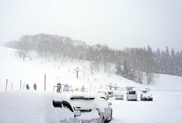 日本森吉山樹冰14