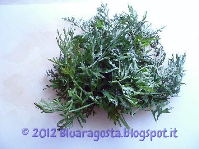 03-foglie di carote lavate