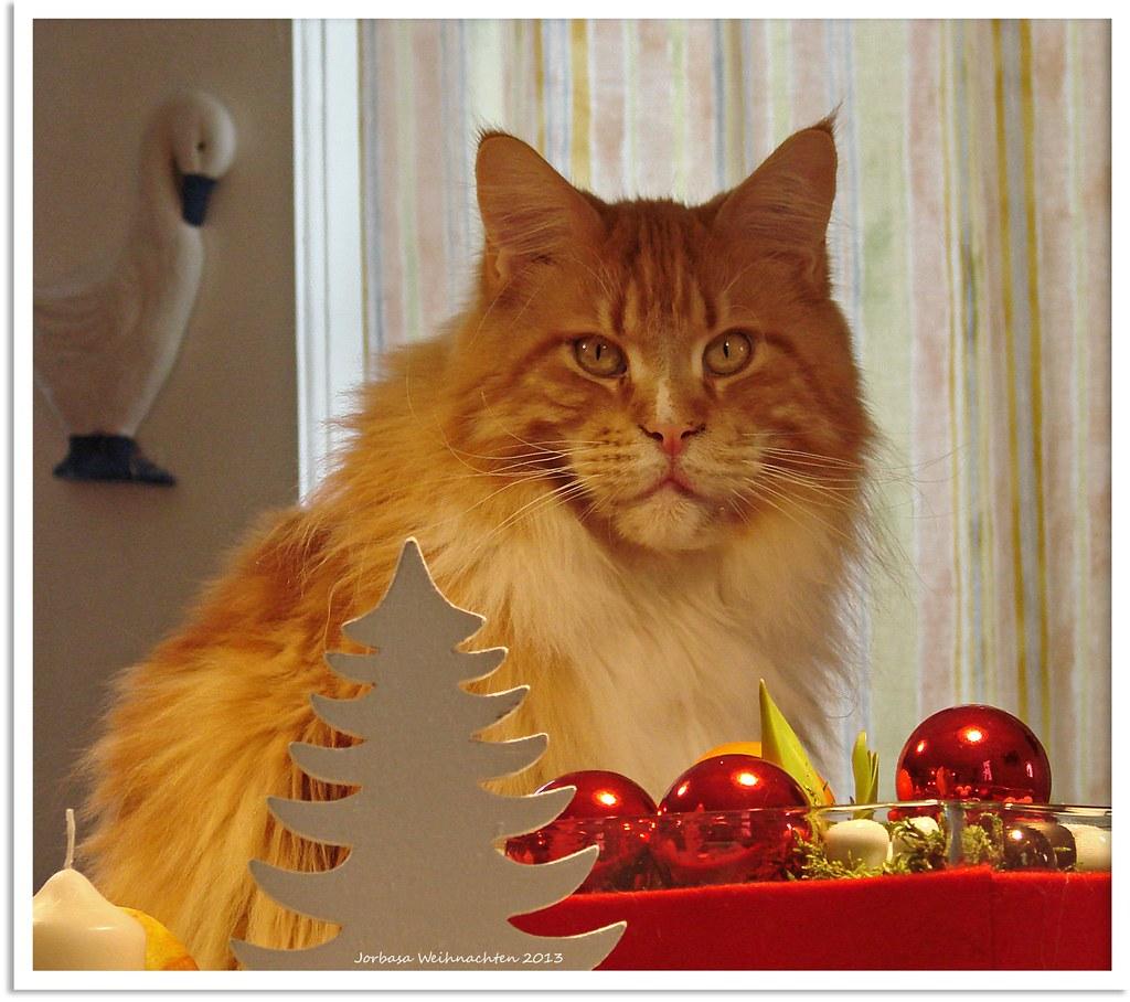 wundersch ne weihnachten merry christmas joyeux no l. Black Bedroom Furniture Sets. Home Design Ideas