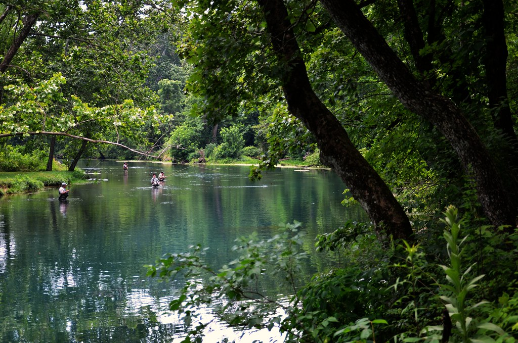 Bennett spring state park missouri trout fishing for Bennett springs trout fishing