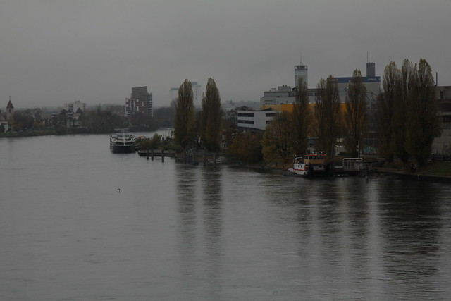 Fluss river in der stadt basel im kanton basel stadt in der
