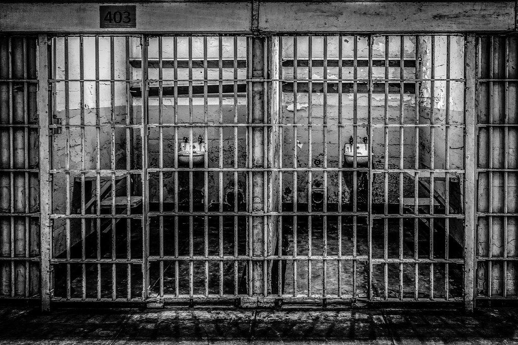 a history of prisons in the world Cruel and unusual prisons prisons were among the first public buildings erected in the new world american prisons: a study in american social history.