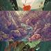Animystics Preview