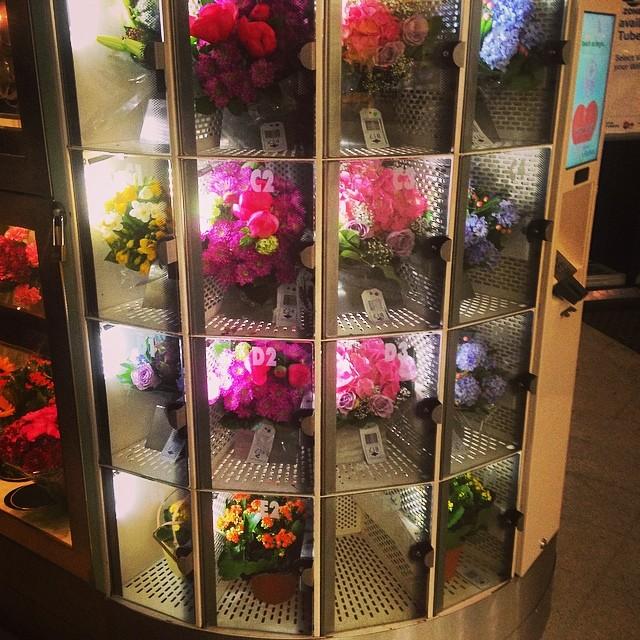 there is a bizarre 24hr flower vending machine at blackfri u2026