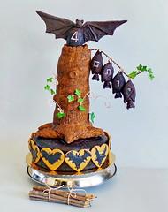 Yotam's Birthday Bat cake