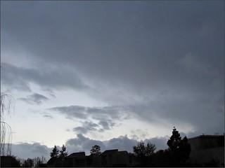 Rainy Morning 2/28/14