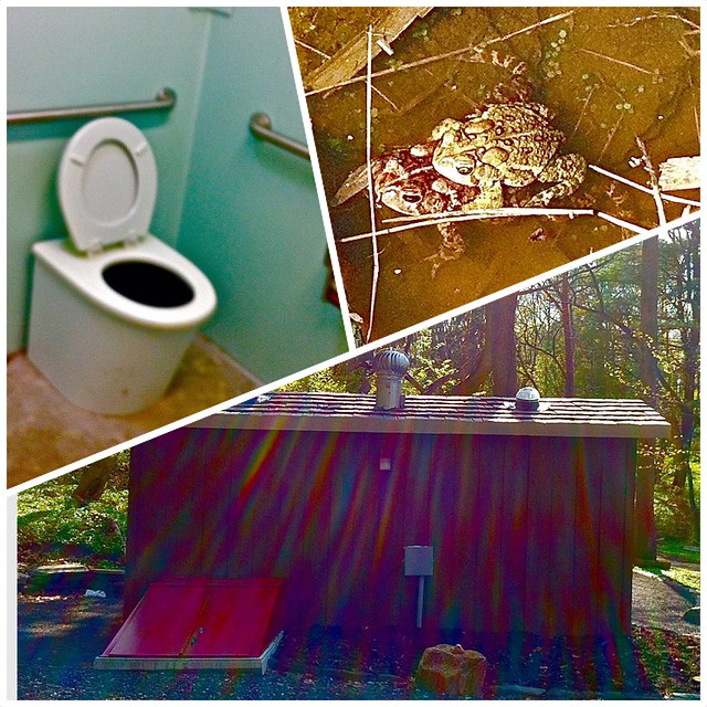New composting toilets popular