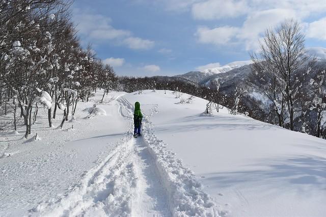 冬の守門岳 登山道
