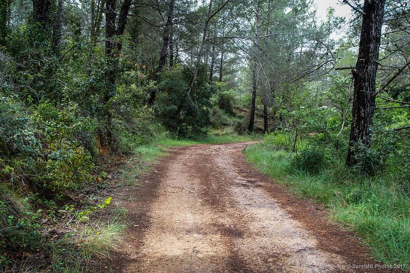 Camino de Marmellar