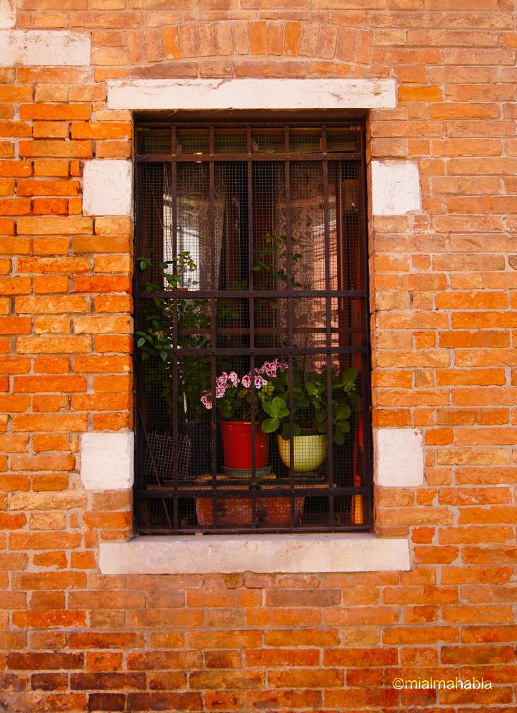Finestra veneziana perdermi a venezia stata la cosa pi flickr - Veneziana finestra ...