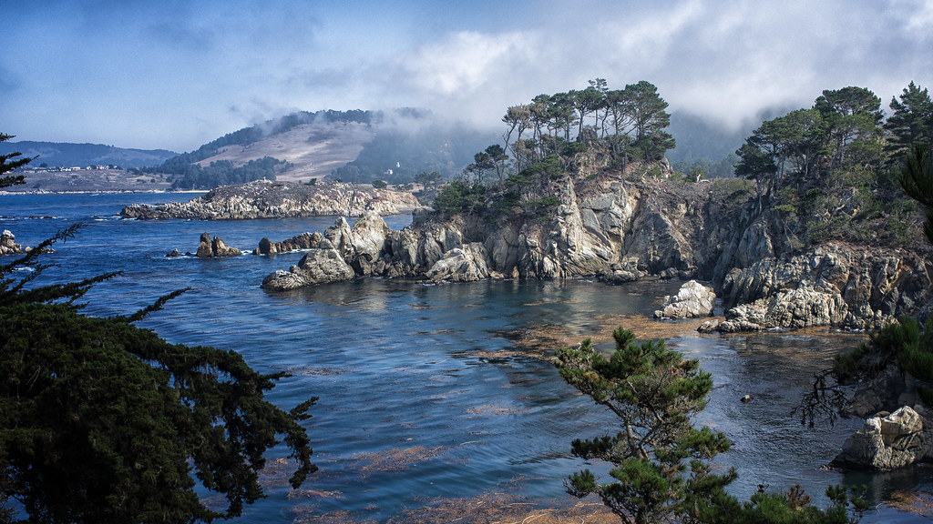 Bluefish cove point lobos explored 10 28 13 my first for Blue fish cove