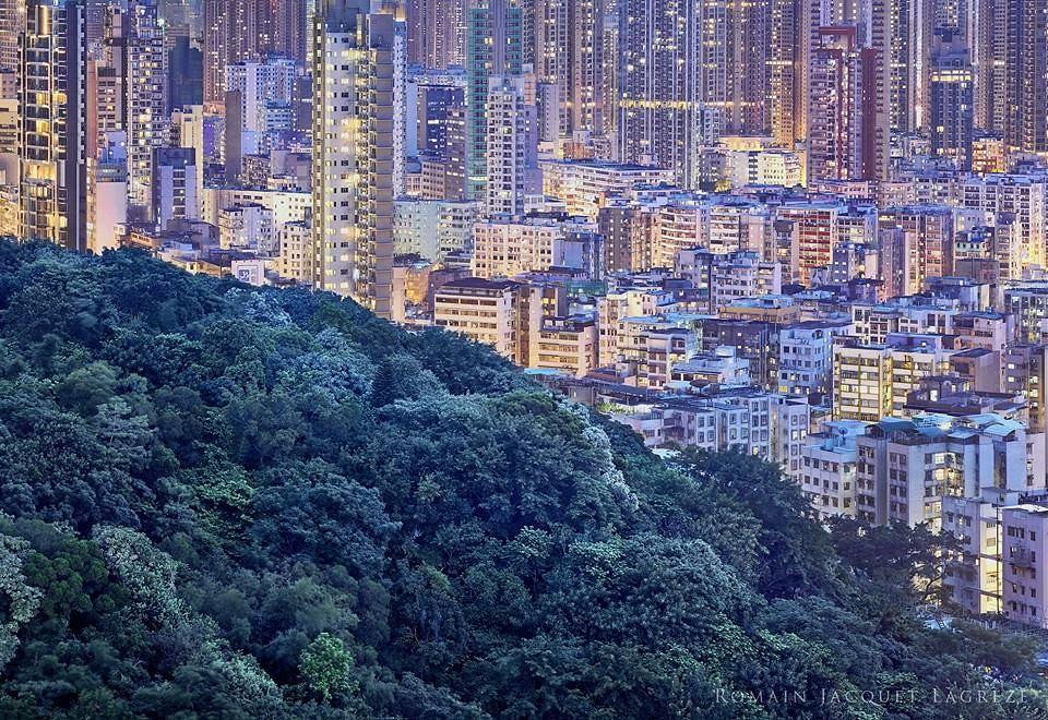 香港。圖片來源:張美惠提供。