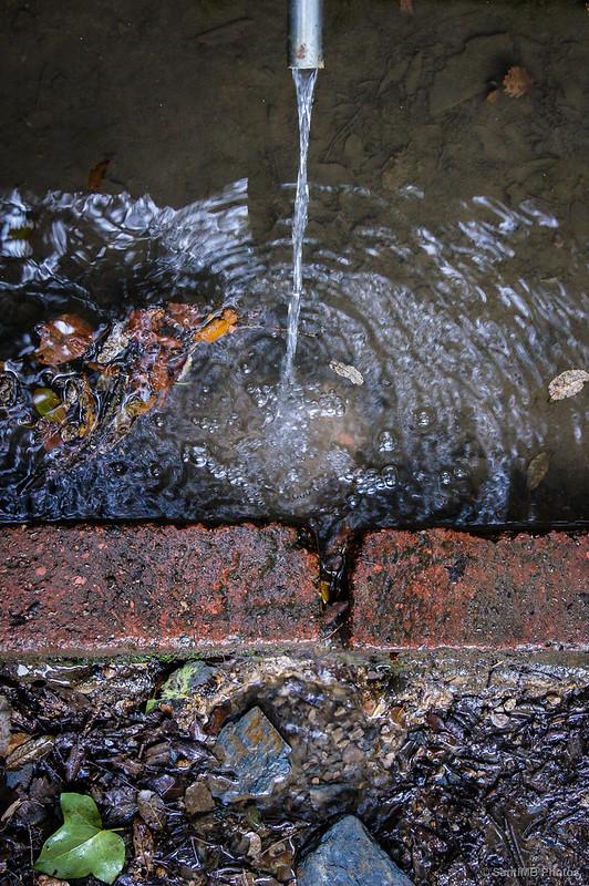 Agua de la Font d'en Canet