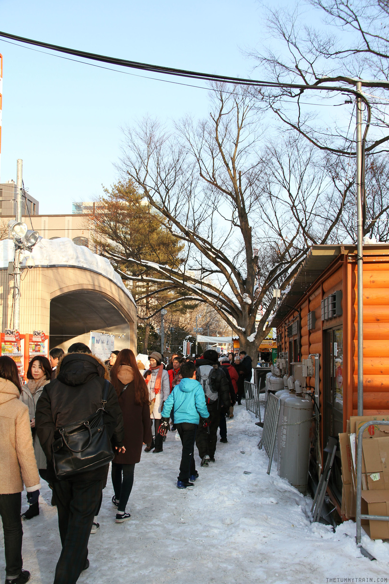 32763964472 bd58bc3a9e k - Sights, Sounds, and Smells at the 68th Sapporo Snow Festival at Odori Park