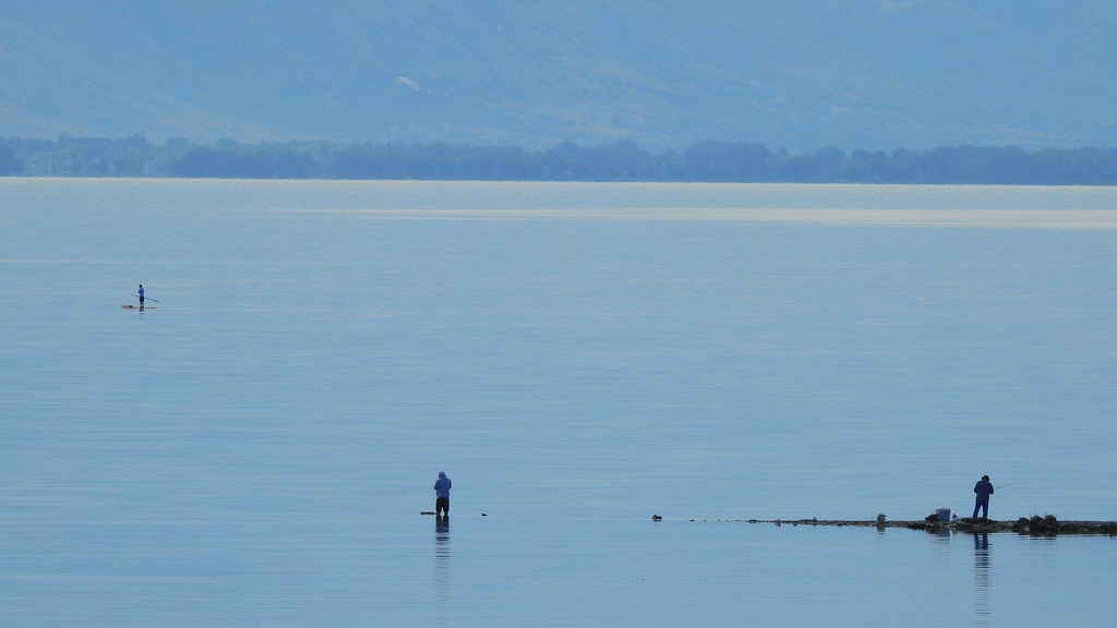Utah lake in july carp fishing from saratoga springs for Saratoga lake fishing