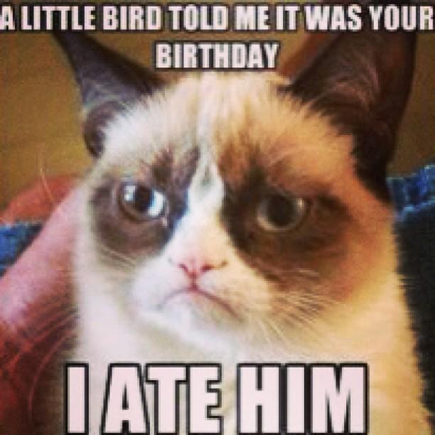 Grumpy Cat Birt...