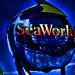 Deep Blue SeaWorld