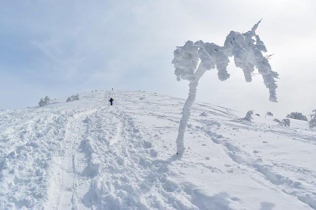 雪と氷の守門岳