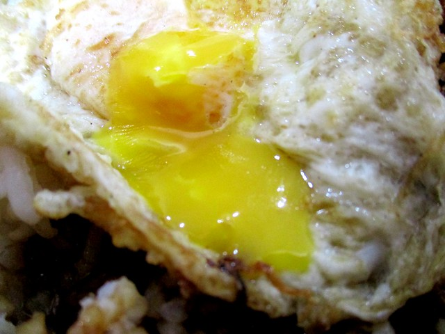 Food Garden fried egg