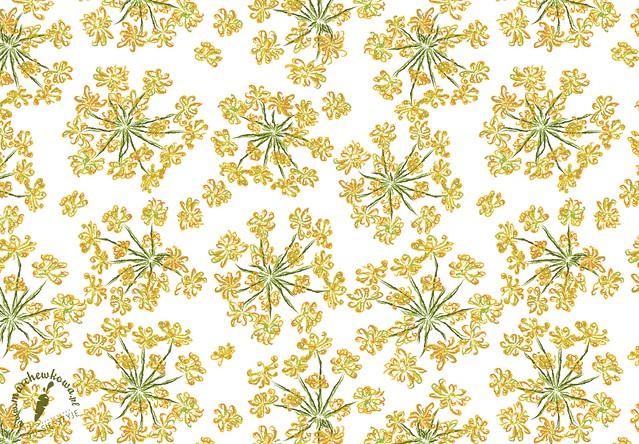 marchewkowa, grafika, nadruk, projekt tkaniny, wzór, print, koper, kwiat, Fennel