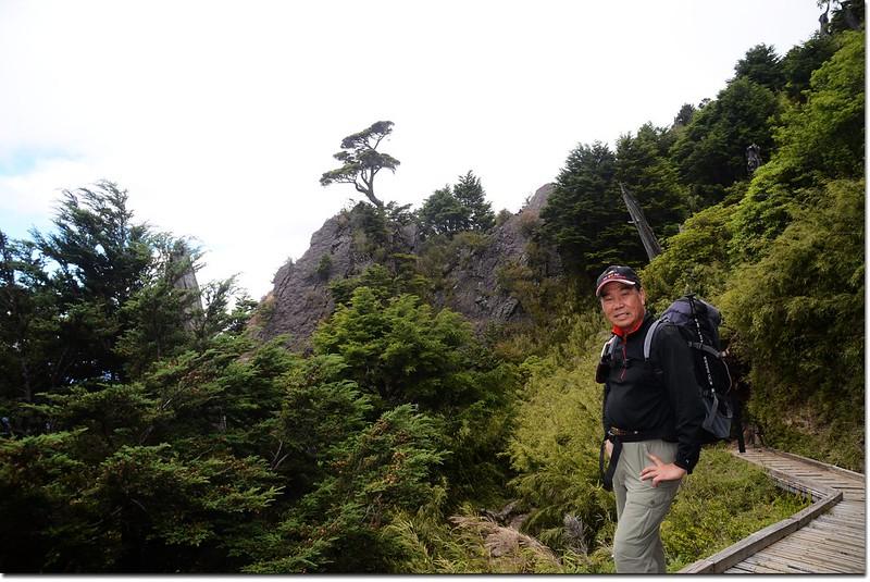 攝於玉山登山步道 4