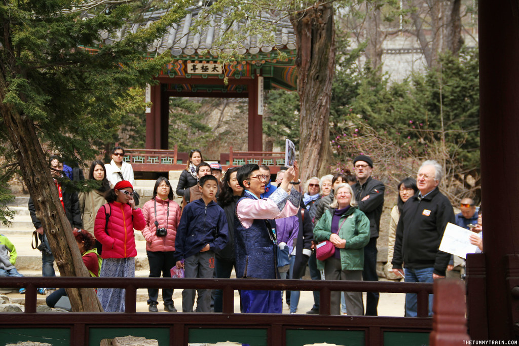 33401740991 f1feb0a79a b - Seoul-ful Spring 2016: Greeting the first blooms at Changdeokgung Palace