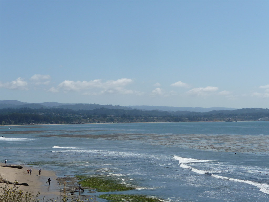 capitola guys 9,771 jobs available in capitola, ca on indeedcom stocking associate, marketing intern, intern and more.