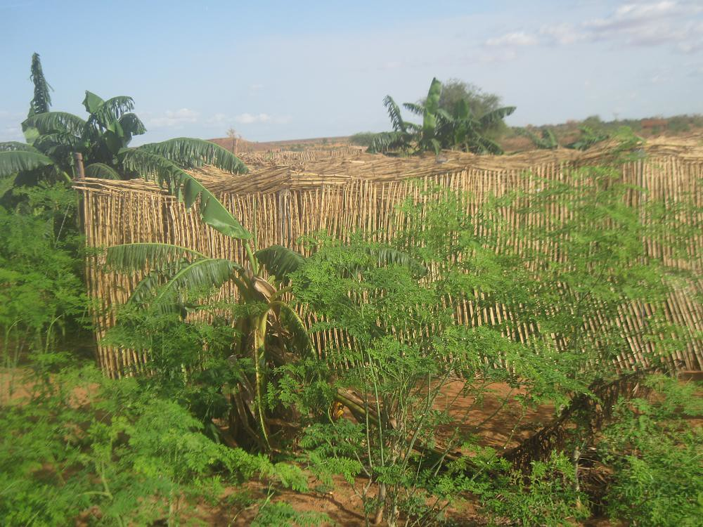 Le jardin scolaire de galbal vue de l 39 exterieur pencils for Led jardin exterieur